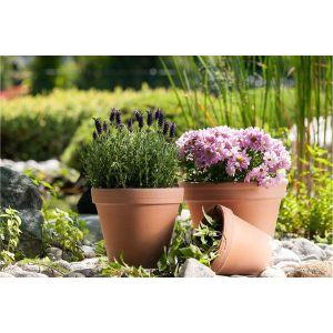 Potterie & plantenbakken A&B Van Hoyweghen