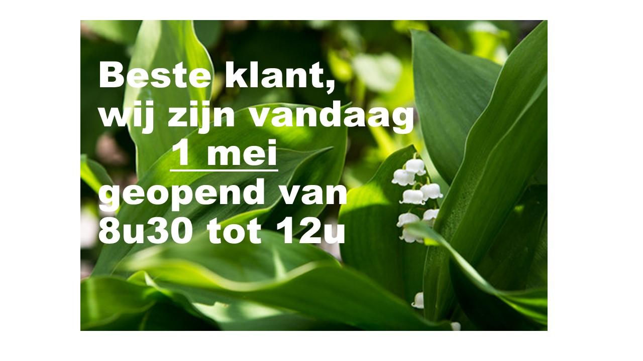 Home A&B Van Hoyweghen